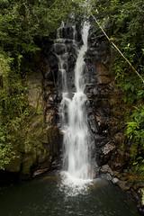 Cachoeira Seca - Camboriú (jennifer.reichert) Tags: longexposure longaexplosição santacatarina camboriu cachoeiraseca brasil nature natureza paisagem cachoeira waterfall water