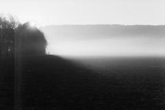 (xbacksteinx) Tags: canonef analog slr canonfd50mmf18 50mm expired film kodaktmax bwnegative november fall autumn early morning mist misty field sunrise light shadow person walking mood moody grain grainy