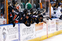 "Kansas City Mavericks vs. Florida Everblades, February 18, 2018, Silverstein Eye Centers Arena, Independence, Missouri.  Photo: © John Howe / Howe Creative Photography, all rights reserved 2018 • <a style=""font-size:0.8em;"" href=""http://www.flickr.com/photos/134016632@N02/39491131955/"" target=""_blank"">View on Flickr</a>"