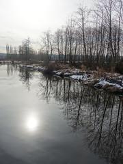 Winter sun reflects on Still Creek (D70) Tags: sony dscrx100m5 ƒ40 88mm 1125 125 burnaby lake regional park winter sun reflects still creek douglasgilpin britishcolumbia reflections stream burnabylake