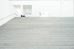 Distant Realities (*Capture the Moment*) Tags: 2016 architecture architektur fotowalk häuserwohnungen innenarchitektur munich münchen sonya7m2 sonya7mii sonya7mark2 sonya7ii sonyfe1635mmf4zaoss sonyilce7m2 stairs treppen
