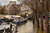 Paris / Flood of the Seine / The feet in water / 6 (Pantchoa) Tags: paris france seine inondation crue eau péniches arbres îledelacité reportage pontneuf maisons façades lespiedsdansleau