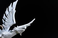 El vigilante de la noche (SerChaPer) Tags: ceuta nikon nikond750 nikonista exterior dragon estatua statue noche night alas wings marmol marble