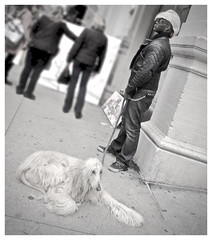 Likes to get noticed (The Stig 2009) Tags: thestig2009 thestig stig 2009 2018 tony o tonyo black white long hair dog straw hat dude candid street ny nyc new york city manhattan afghan hound guy leather jacket