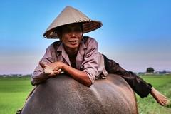 (Fernanda Hadad) Tags: sky ciel couleurs colors man people animal backpack canon70d canon ngc travel sunset nature hoian vietnam asia flickrtravelaward
