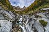 Cinca joven (2) (sostingut) Tags: d750 valle pirineos otoño nieve