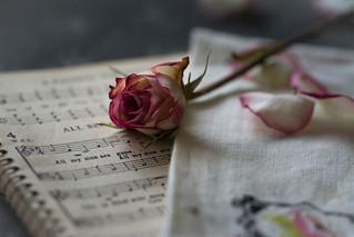 Sing To Me of Roses