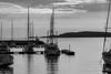 Early morning at Mgarr Harbour, Gozo (kurjuz) Tags: cominoisland gozo mgarr blackandwhite harbour marina masts morning morninglight rigging sailingboats sea seascape silhouette