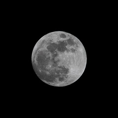 Super Moon, Blue Moon (jlcummins - Washington State) Tags: moon superbluebloodmoon sky tamronsp150600mmf563divcusd canon celestial