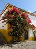 20170913-_DSC6719.jpg (Remein Song) Tags: 葡萄牙 奥比都斯 óbidos leiria pt