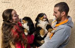 DSC00284 (sportsHUN) Tags: landscape babys dogs puppies portre