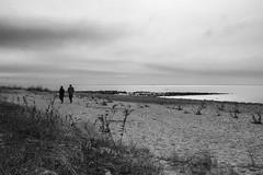 A Warm February Day (mattbpics) Tags: landscape winter long beach longbeach efs24mmf28stm 24mm prime canon 70d bw blackandwhite stratford