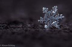 Snowflake on fabric (Wildlife, Landscape & Cultural) Tags: snowflakes snowflake snow