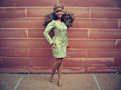(Linayum) Tags: barbie barbiedoll barbiecurvy curvybarbie mattel doll dolls muñeca muñecas toys toy juguetes linayum afrobarbie barbielook barbiethelook