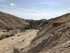 2018-02-15 GOPS Geology Hike (125) (MadeIn1953) Tags: 2018 201802 20180215 greatoutdoorsgo go gops greatoutdoorspalmspringsgops hiking california coachellavalley riversidecounty meccahills paintedcanyon laddercanyon slotcanyon