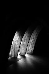 Claws (Salvo.do) Tags: black white photo photography bw monochrome monocromatic grey grigio nero bianco pentax k5 travel discover explore claws light shadow reflex