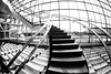 Are You On My Side (Thomas Hawk) Tags: america saltlakecity saltlakecitylibrary usa unitedstatesofamerica unitedstates utah architecture bw library stairs fav10 fav25