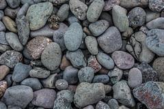 Hall's_Harbor-beach-1_MaxHDR (old_hippy1948) Tags: rocks beach seaweed