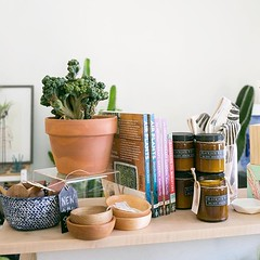 """Happy #planttiptuesday Everyone 🌿👋 We're on """"pins and needles"""" for you al to see which plants we """"pricked"""". Head over to our Instagram Stories to learn more & shout out to all of those who got our silly puns about it, y'all are """"sharp"""" 😉 (The ZEN Succulent) Tags: the zen succulent terrarium instagram"""