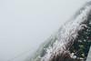 _MG_3747 (waychen_C) Tags: nantou renai renaitownship hehuanshan hehuanmountain fog mist now taiwan 台灣 南投 仁愛 仁愛鄉 合歡山 wuling 武嶺
