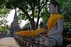 13-03-17 Thailandia (96) R01 (Nikobo3) Tags: asia thailandia ayuthaya templos budas travel viajes arquitectura architecture nikon nikond800 d800 nikon247028 nikobo joségarcíacobo paisajeurbano