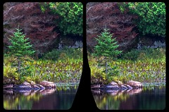 Raby Lake, Ontario 3-D / CrossEye / Stereoscopy / HDR / Raw (Stereotron) Tags: ontario canada north america province lake river creek tree plants forest woods outback backcountry wilderness autumn fall crosseye crosseyed crossview xview cross eye pair freeview sidebyside sbs kreuzblick 3d 3dphoto 3dstereo 3rddimension spatial stereo stereo3d stereophoto stereophotography stereoscopic stereoscopy stereotron threedimensional stereoview stereophotomaker stereophotograph 3dpicture 3dglasses 3dimage twin canon eos 550d yongnuo radio transmitter remote control synchron tonemapping hdr hdri raw 3dframe fancyframe floatingwindow spatialframe stereowindow window