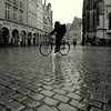 The weather yesterday today and tomorrow (Bernhardt Franz) Tags: yesterday today tomorrow weather cobblestone münster prinzipalmarkt cyclist people bicycle blackandwhite bw street wet rainy stormy rough snowy