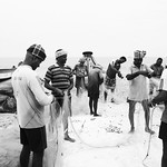 Indian fishermen gather fish on a fishing net after haul. thumbnail