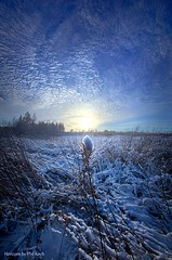 Therefore We Do Not Lose Heart (Phil~Koch) Tags: travel journey life mood emotions country outdoors colors living heaven weather horizons lines landscape field art meadow sky twilight horizon sunset clouds wisconsin scenic vertical photography office portrait serene morning dawn nature natural earth environment inspired inspirational season beautiful hope love joy dramatic unity trending popular canon rural fineart arts shadow sun sunrise light peace shadows blue white snow winter frozen