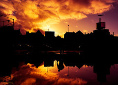 Who seeks shall find - Sophocles by #MrOfColorsPhotography #InspireMediaGroningen (mrofcolorsphotography) Tags: colorful colour colourful colours cold mrofcolors mrofcolorsphotography photographer photography photooftheday photo photos city cityphotography sony sonya7 groningen inspiremedia inspiremediagroningen sky skyporn clouds cloud cloudy cloudporn close water reflection reflections thenetherlands holland instagram 500px flickr people walking walk journeyofcolors journey dillenvandermolen buidling house architectuur streetphotography street world winter weather sunlight sun sunny sunshine sunset sundown