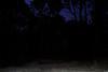 10 (Carlos Yamil Neri) Tags: mazamitla pérdida linterna fantasma miedos