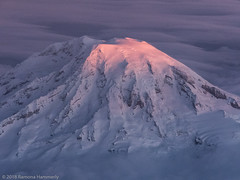 Mt. Rainier (Ramona H) Tags: mountain sunrise rainier mtrainier dawn ice mtrainiernationalpark cold volcano breathtakinglandscapes