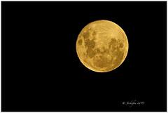 Super Blue Blood Moon 2018 (jeckafou) Tags: moon 2018 blood blue azul sangre roja santiago chile sky luna supermoon bloodmoon bluemoon