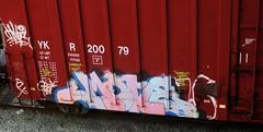 mone (timetomakethepasta) Tags: mone yme bfk america freight train graffiti art solo artist moniker ykr benching boxcar freedom
