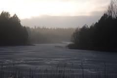 IMGP9157_ (Maxu88) Tags: lake ice fog poland białystok ogrodniczki supraśl puszcza knyszyńska