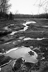 icy morning (RubyT (I come here for cameradarie)) Tags: lgg5 ice water bw nb bn blancoynegro noirblanc schwarzweiss blackandwhite landscape mono monocromo monochrome черноеибелое