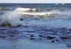 20171014_28 Carlin Park Jupiter Palm Beach County FL USA (FRABJOUS DAZE - PHOTO BLOG) Tags: usa yhdysvallat america northamerica amerikka florida fl fla southflorida sunshinestate palmbeachcounty pbc jupiter carlinpark park beach sandbeach atlantic ocean waves water atlantti valtameri meri vesi ranta hiekkaranta uimaranta