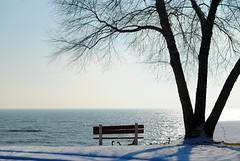 With a view of Lake Michigan (Cragin Spring) Tags: wisconsin wi midwest unitedstates usa unitedstatesofamerica sky lakemichigan lake water bench tree shoreline snow winter greatlakes racine racinewi racinewisconsin