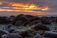 Sunset Over Sombrio (Joel Apple) Tags: sun seaweed ocean algae vancouverisland pacificnorthwest lowtide sunset rocks northamerica sombriobeach britishcolumbia pacific clouds