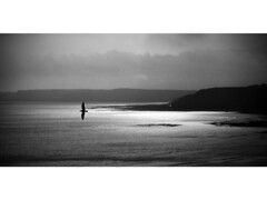 Sunrise over South Bay, Scarborough (Powderpuff GP) Tags: peaceful sunrise seascape blackandwhite monochrome seagull southbay scarborough