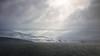 """Luminosity"" - Marian Cove, King George Island, Antarctic Peninsula (alejandro.romangonzalez) Tags: antarctica antarcticpeninsula mariancove kinggeorgeisland southshetlandislands landscape seascape bas britishantarcticsurvey sea southernocean coast coastal clouds glacier outdoors research iceberg cliff rrsjamesclarkross jcr"