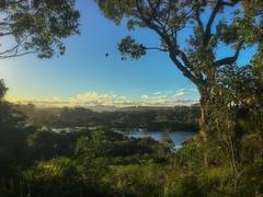 Moruya River (caralan393) Tags: insta moruya river sunset phone lookout