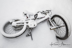 The memories of Summer are slowly fading away... (Kevin Adams.1) Tags: bike bicycle bmx snow lost buried cover tire pedal chain seat pegs handlebars spokes powder winter michigan kalamazoo kzoo midwest weather nature mothernature rubber metal rust white streetphotography stilllife random canon photography urbandecay kids children playground junk toy 2018