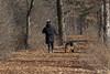 january 2018 lake katherine (timp37) Tags: no control dog pet lake katherine illinois path palos january 2018 winter walking