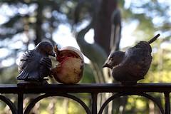 Sparrows &  Pomegranate (Strocchi) Tags: statues statue birds uccelli iron ferro pomegranate dof canon eos6d 24105mm