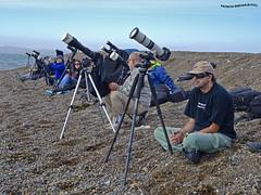 Esperando el Eclipse Anular - Patagonia el 26 de febrero de 2017 (pniselba) Tags: camarones chubut argentina playa beach mar oceano sea ocean