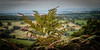 Fern view (paullangton) Tags: fern view wales canon green nature landscape wild sky field country blue dof