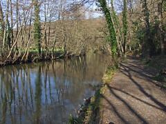 River Teign upstream from Steps Bridge (Philip_Goddard) Tags: teignvalley dartmoornationalpark devon southwestengland england unitedkingdom britain british britishisles greatbritain uk europe wooded stepsbridge dunsford