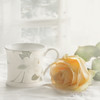 Good morning Sunday (BirgittaSjostedt) Tags: rose still stilllife highkey flower nature cup window texture paint