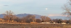 20180130_172345_stitch (JoelDeluxe) Tags: southvalley moon super blue blood full rising mune newmexico landscape sandia mtns farmland joeldeluxe